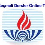 Açık Öğretim Lisesi Sanat Tarihi 2 Online Test 3