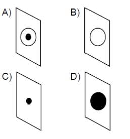 Açık Lise Fizik 4 Online Test 1