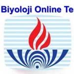 Açık Lise Biyoloji 8 Online Test 1