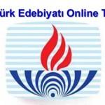 Açık Lise Türk Edebiyatı 6 Online Test 4
