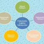 AYT Lise Psikoloji Özet Konu Anlatımı ve Konu Testleri