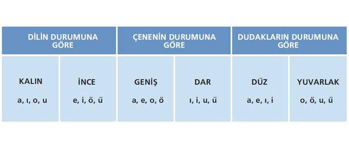 Türkçenin Ses Özellikleri: Ünlü Uyumları, büyük ünlü uyumu nedir, küçük ünlü uyumu nedir?