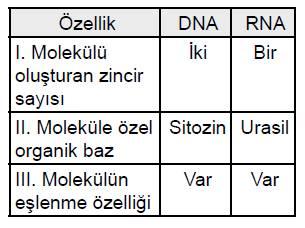 acik-lise-biyloji-1-sorulari-17