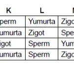 Açık Lise Biyoloji 6 Online Test 1