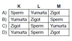 acik-lise-biyoloji-3-ocak-2016-soru-13-cevap