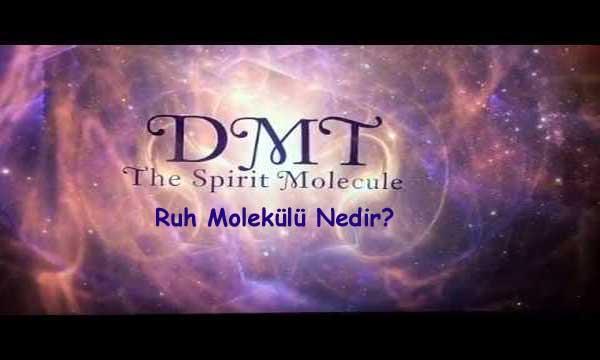 Molekül Nedir? Molekül Çeşitleri Nelerdir? Ruh Molekülü Nedir?
