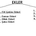 Türkçede Ekler (Yapım ve Çekim Ekleri)