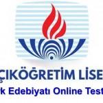 Açık Lise Türk Edebiyatı 8 Online Test 2